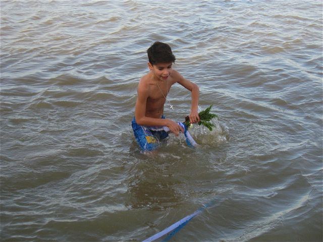 Theo in the sea 2