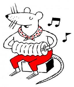 pirates rat